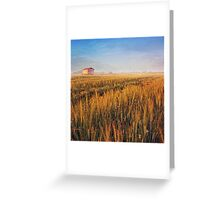 sunrise over misty wheat field Greeting Card