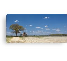 Georgia Past Canvas Print