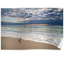 Surfers Paradise | Gold Coast | Australia Poster