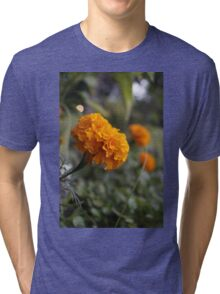 Can You See Me Now Tri-blend T-Shirt