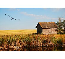 fall on the prairies Photographic Print