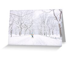 Winter - Central Park - New York City Greeting Card