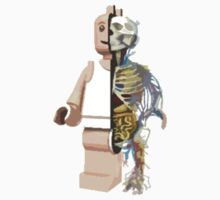 Anatomy of  a Minifigure by grendock