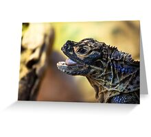 Reptile. Melbourne Zoo Greeting Card