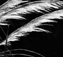 Grass Feathers Sticker