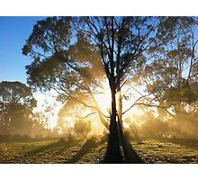 Breakthrough Photographic Print
