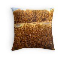 Yellow Bracket Throw Pillow