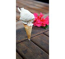 Imitation Ice Cream Photographic Print