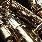 Alto Saxophone 04 by exvista