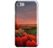 """"""" Kin Sunset """"  iPhone Case/Skin"""