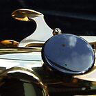 Alto Saxophone 09 by exvista