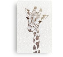 The Intellectual Giraffe Canvas Print