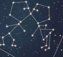 Love Constellation Sticker