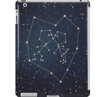 Love Constellation iPad Case/Skin