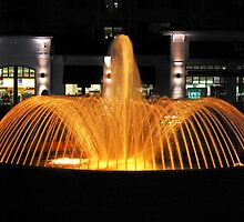 Golden Fountain at Night by TJ Baccari Photography