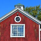 Red Barn by boliver