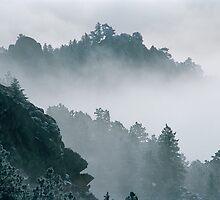 The Edge Of Tomorrow by nikongreg