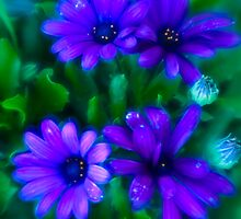 Blue Flowers by Sue Ratcliffe
