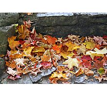 The Leaves Of Autumn Photographic Print
