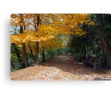 A Autumn Trail Canvas Print