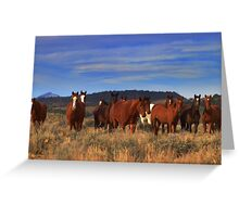 I Dreamed A Dream That All Wild Horses Were Living Free  Greeting Card