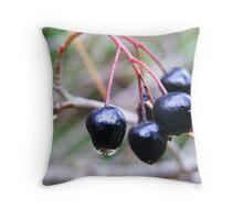 autumn berries Throw Pillow