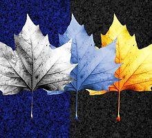 Fallen leaf by Christine Lake