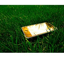 Golden iPhone on the lawn Photographic Print