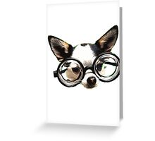 Funny Chihuaua Greeting Card