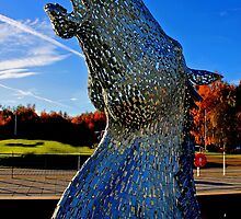 Horse Head by Alan Findlater