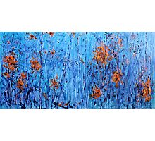 Fireflies by the Lake - Painting Photographic Print