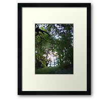 Whispering Light Framed Print