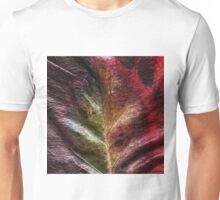 Autumn in Afghanistan Unisex T-Shirt