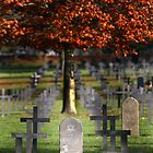 The grave of a German Jewish soldier by Tony Roddam