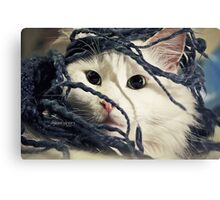 Little Furry Bugger Canvas Print