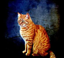 Ginger Magnificence! by Lynne Haselden