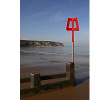 Swanage beach and small dog Photographic Print