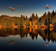 Moon over Mill Pond by Mick Burkey