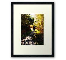 Saturday Stroll Framed Print