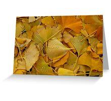 Fallen Ginkgo tree leaves . Greeting Card