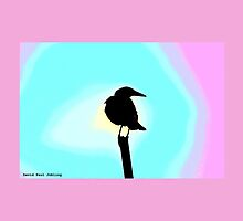 Backyard Magpie Card #4 of 8 by JoBling