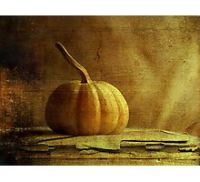 Gourd Photographic Print