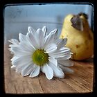 TtV Pear and Daisy by tammy lee bradley