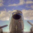 Flight Ready by Bill Wetmore