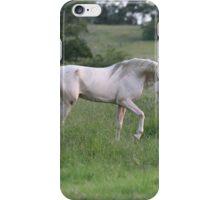 Strut iPhone Case/Skin