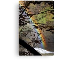 Peek-a-bow Canvas Print