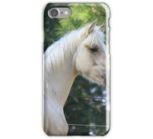 Palomino Colt iPhone Case/Skin