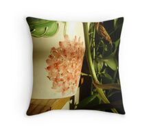 Expressing on porcelain Throw Pillow