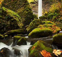 Elowah Autumn by DawsonImages