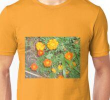 Marigolds  in full bloom Unisex T-Shirt